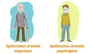dysfonction érectile organique ou psychogène