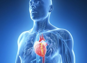Endocardite infectieuse