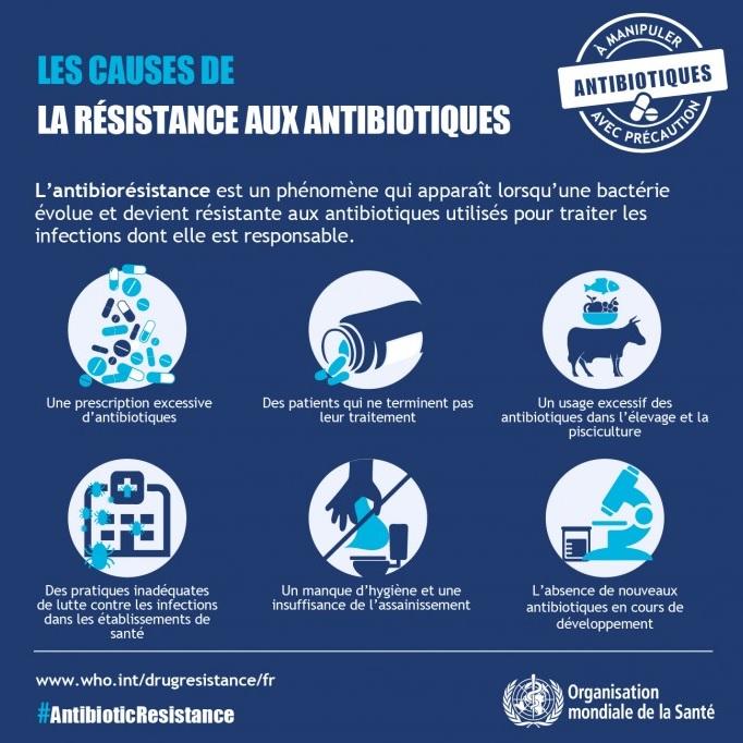 OMS semaine mondiale antibiotiques