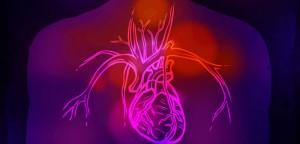 Femmes et hommes inégaux face à la crise cardiaque