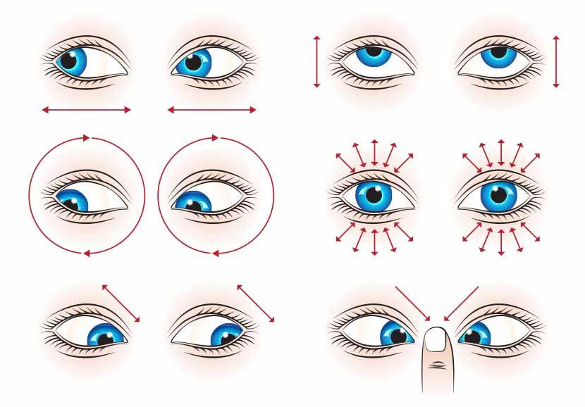 Les cercles roses devant les yeux