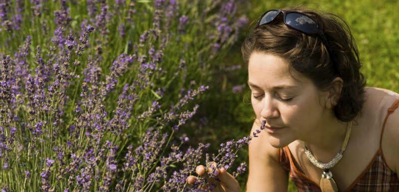 Troubles olfactifs et diabète: un nouveau lien découvert