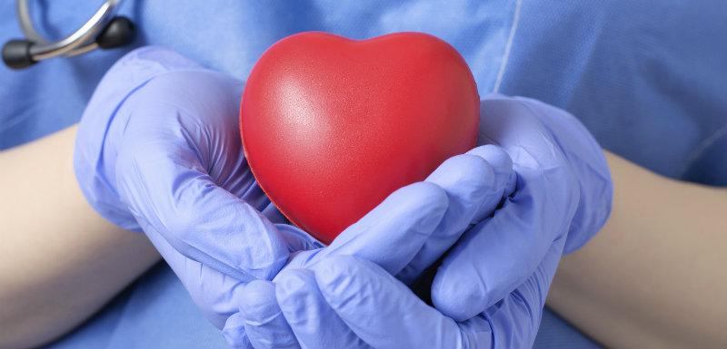 Greffes d'organes : un succès pour l'année 2015