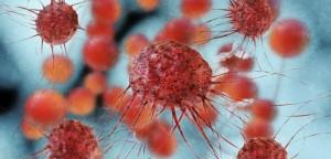 Une chimiothérapie mini-dosée pour contrôler le cancer