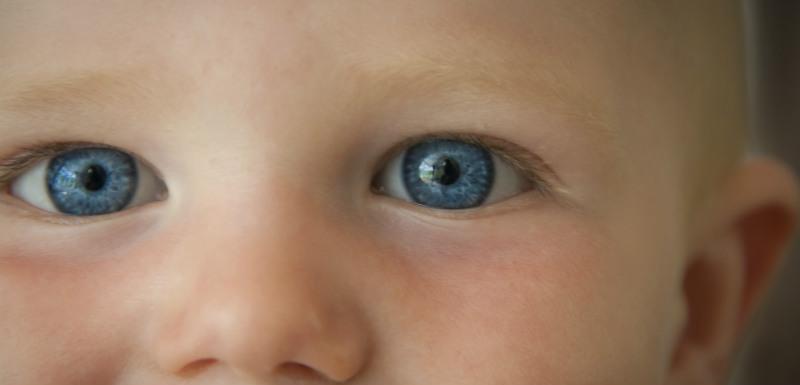 Les yeux battus rouges chez lenfant de 10 années