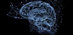 Un nouvel espoir pour les cancers du cerveau