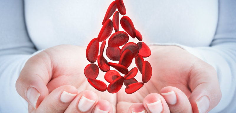 Transfusion : survie variable selon le sexe et l'âge des donneurs