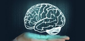 Un cerveau virtuel pour comprendre l'épilepsie