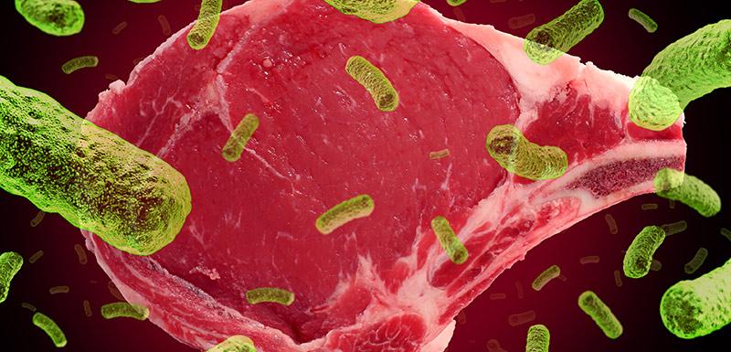 contamination de la viande par l'anthrax