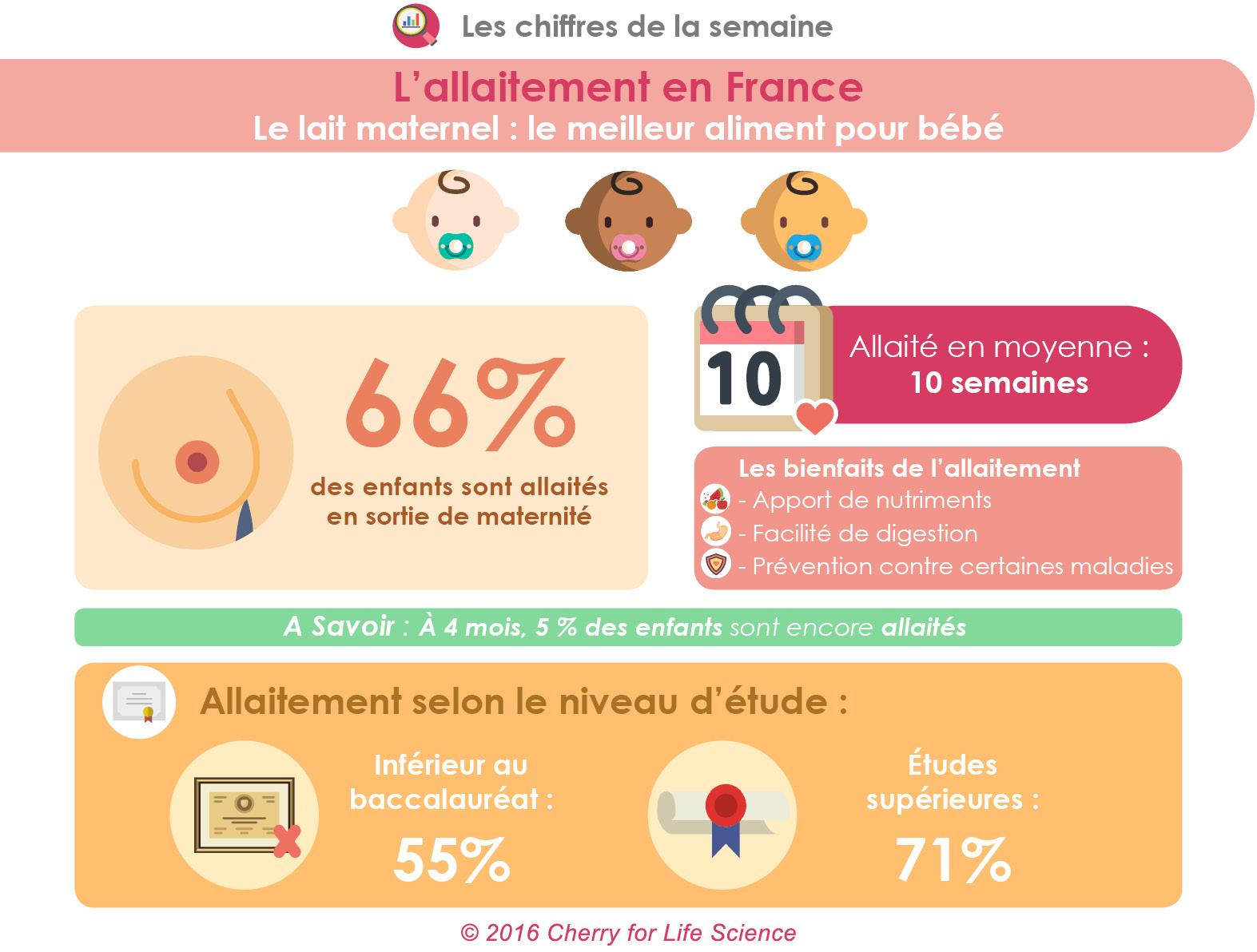 allaitement infographie