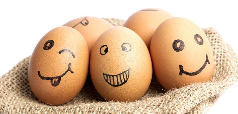 L'œuf, tout savoir sur ses vertus