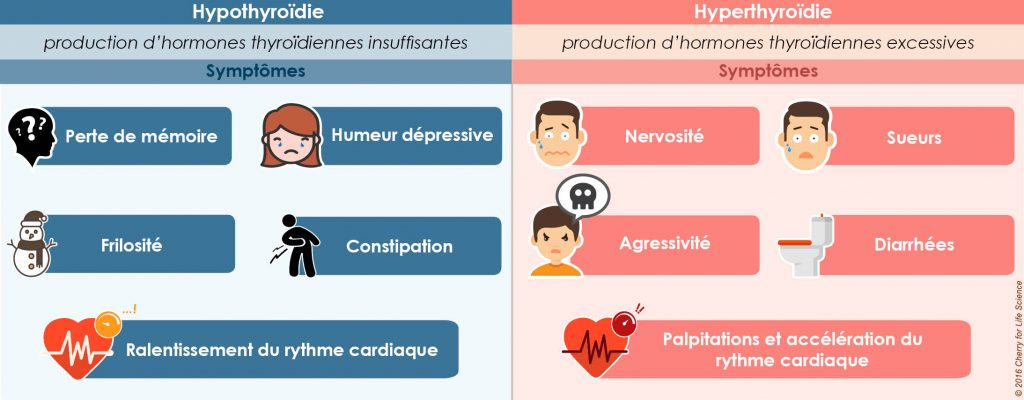 cancer thyroide infographie symptome