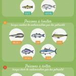 infographie : poisson pendant la grossesse