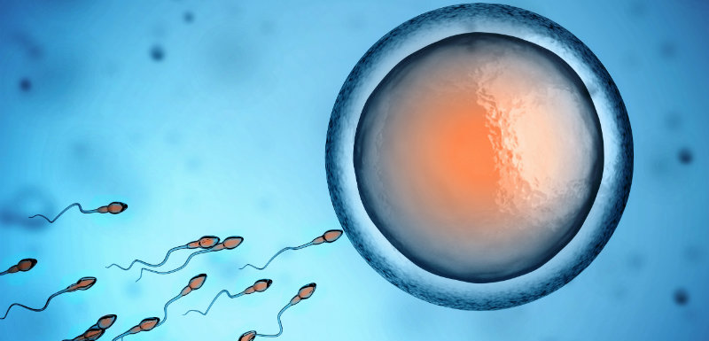 Is male infertility passed on from father to son?
