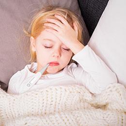 m ningites m ningocoques sympt mes diagnostic traitement et pr vention. Black Bedroom Furniture Sets. Home Design Ideas