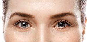 Un anticorps efficace contre une maladie rare de l'œil