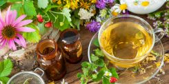 Quelques plantes utiles en cas d'allergie