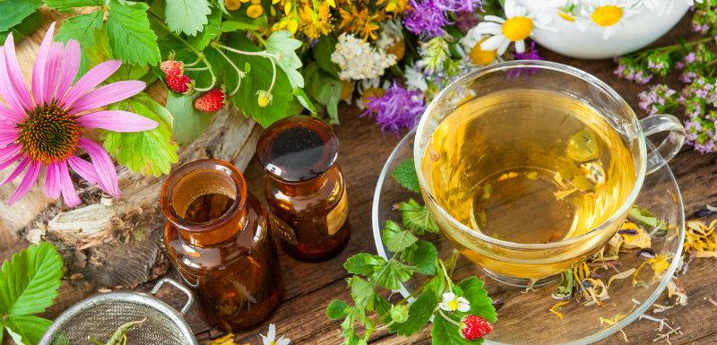 Plantes médicinales allergie