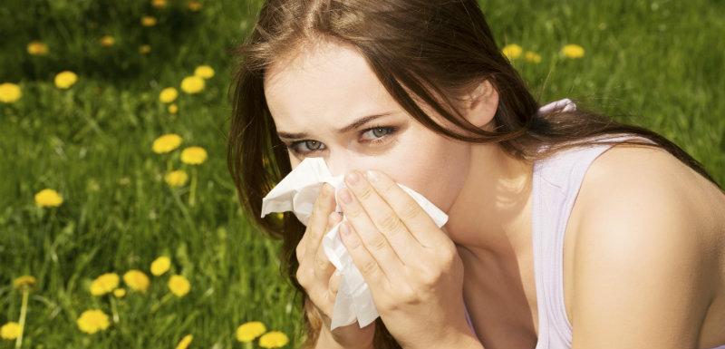 Rhume des foins probiotiques