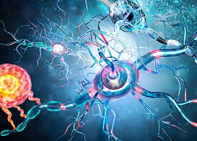 cellules cerveuses infectées par des tumeurs cancéreuses