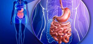 Greffe de flore intestinale pour la Rectocolite hémorragique