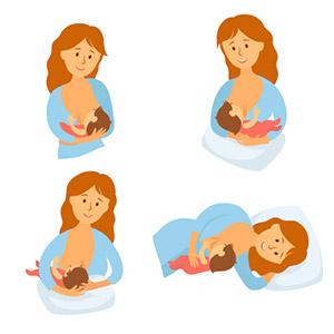 allaitement positions