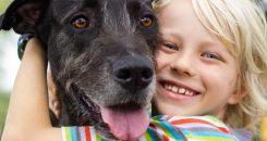 La présence d'un chien pour limiter le stress chez l'enfant ?