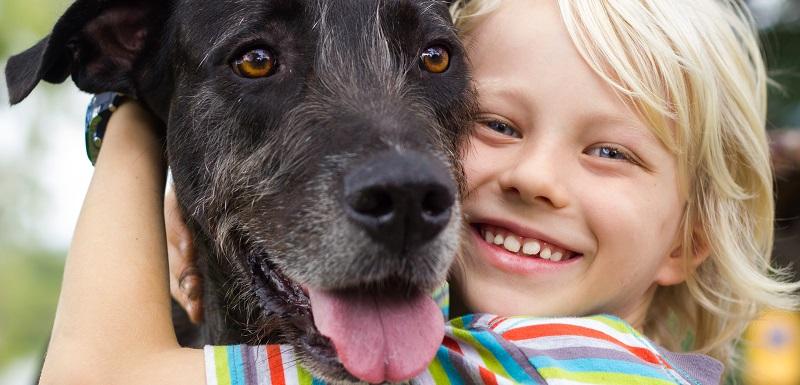 stress chez l'enfant chien