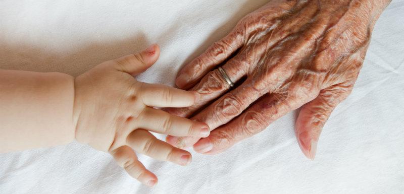 Le stress prénatal influence la longévité