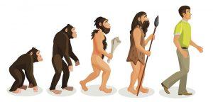 Evolution des régimes alimentaires et génétique ?