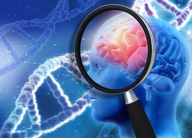 huntingtine-affection neurodégénérative-rare-héréditaire