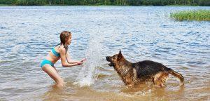 Alerte aux cyanobactéries dans nos rivières !
