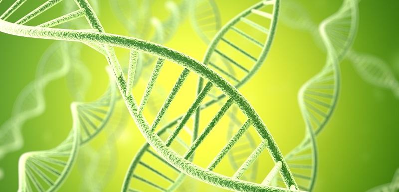 maladies inflammatoires-modifications gènes-environnement
