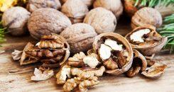 Quand les noix activent le cerveau pour contrôler l'appétit…