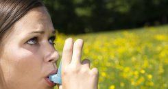 Asthme allergique : vers une nouvelle thérapie cellulaire ?