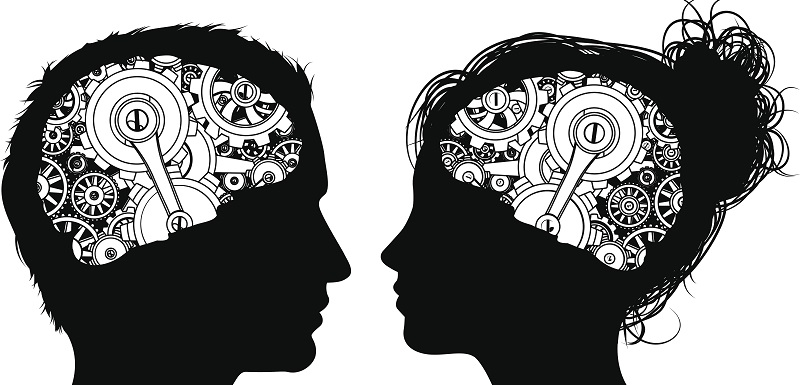 activité cérébrale plus élevée chez les femmes que chez les hommes