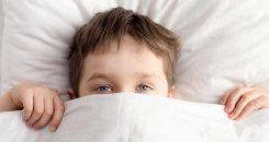 Troubles du sommeil chez l'enfant : telle mère, tel(le) fils-fille !
