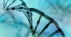 Maladie de Huntington : où-en est la recherche ?