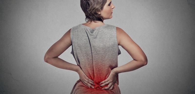 supplémentation en probiotiques-soulager inflammation rénale chez les patients atteints de lupus