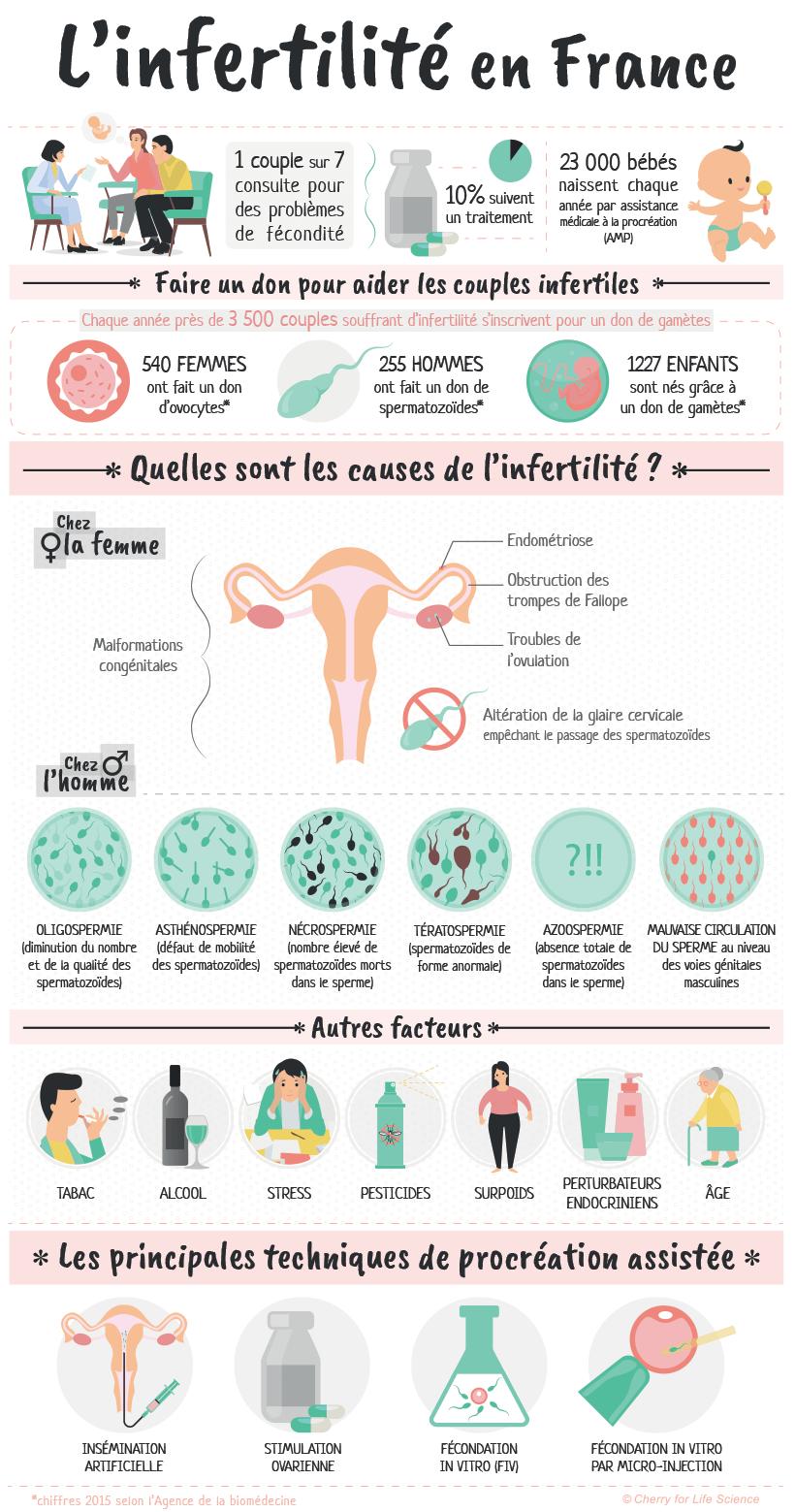 Infographie: l'infertilité en France