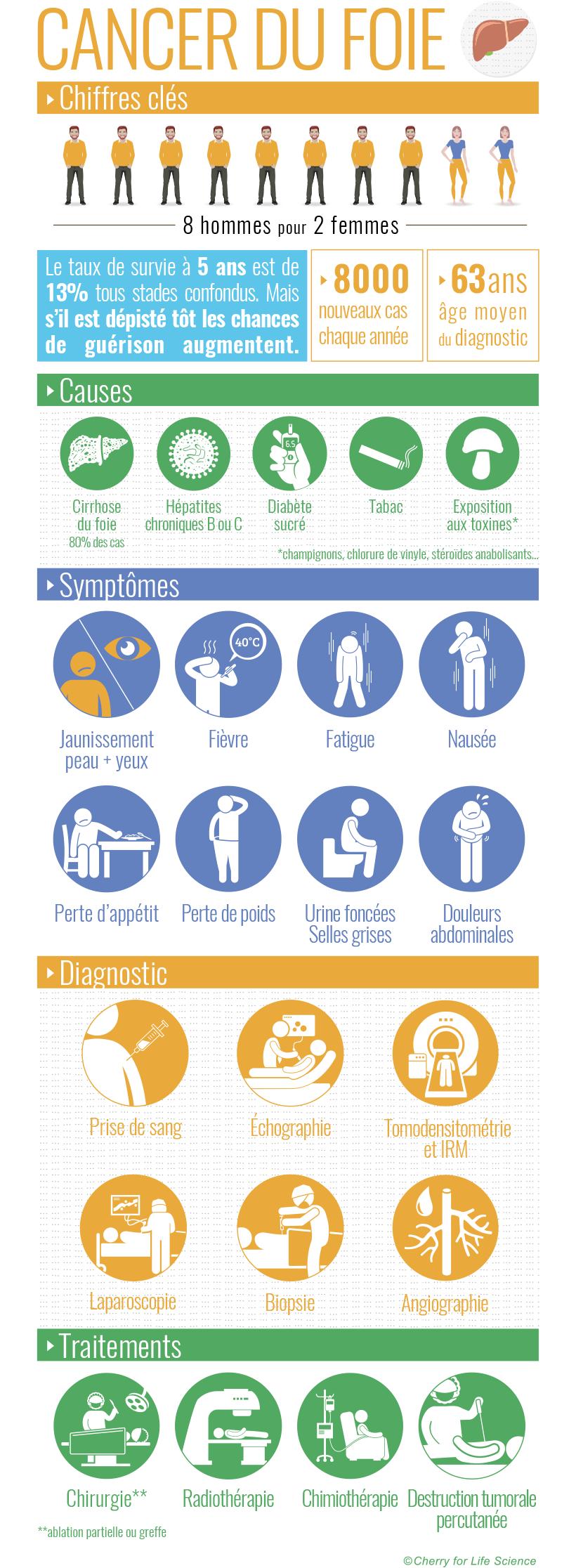Cancer du foie : Facteurs de risque - Symptômes - Diagnostic ...