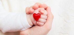 Fécondation in-vitro : plus de risques de malformations cardiaques pour le nouveau-né ?