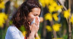 Allergies respiratoires : le point sur la désensibilisation
