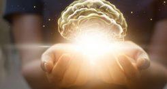 Une luminosité adaptée pour booster nos performances cérébrales