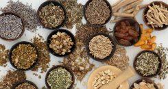 Les plantes utiles pour lutter contre le stress