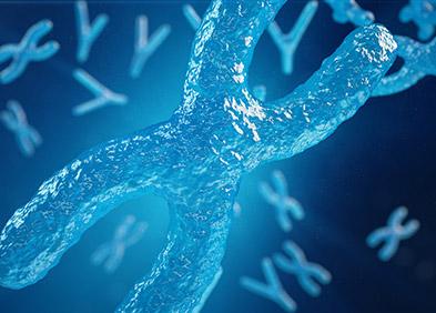 Déficit immunitaire combiné sévère lié à l'X
