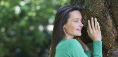 Sylvothérapie : les bienfaits du bain de forêt