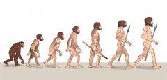 L'être humain évolue-t-il encore ?