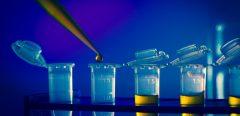 Un cancer du sein avancé guéri par immunothérapie