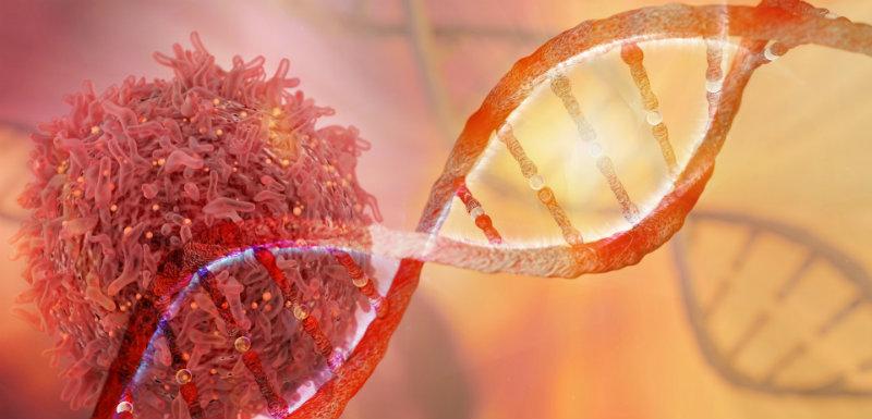 ADN et cellules avec tumeurs